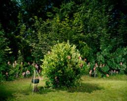 Inszeniertes Gruppenbild von Pfadfinder und Pfadfinderinnen. In einer Waldlichtung steht im Vordergrund ein rund geschnittener Kirschlorbeer, nebenan eine Feuerstelle mit einem Pfadfinder-Kochtopf. Aus dem Wald im Hintergrund und aus dem Busch im Vordergrund strecken Pfadfinder-kinder ihre Köpfe hervor.