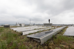 Auf einem Dach mit einer grossen Photovoltaikanlage steht ein Techniker, welcher die Anlage wartet.